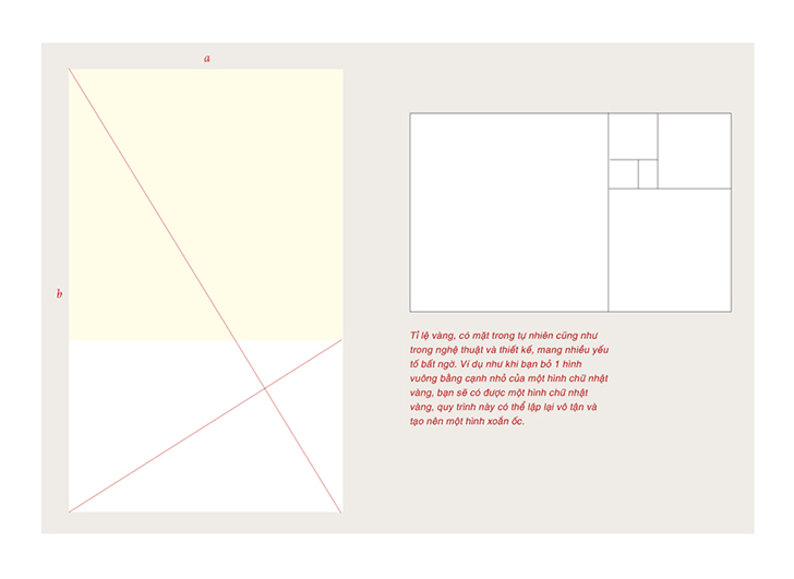 layout grid